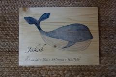 Geburtstafel Junge Wal