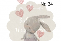 Nr. 34-Hase